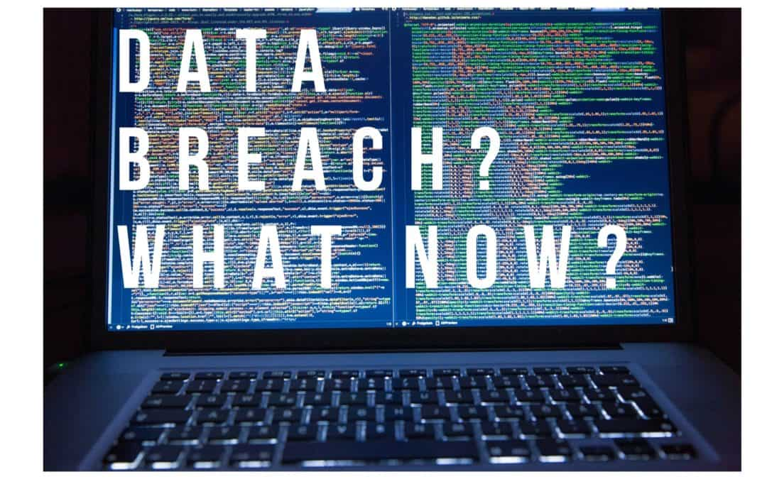How to Respond to a Data Breach: A Step by Step Guide